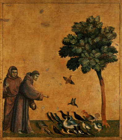 francis-and-birds1